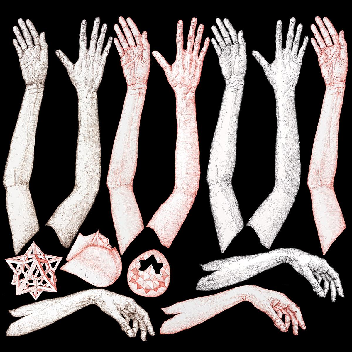 Hands Chart - Mirena Rhee